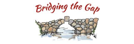 Bridging The Gap Image